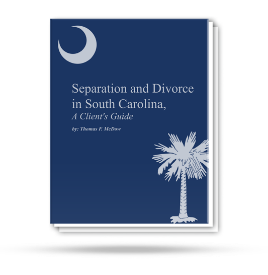 Separation and Divorce in South Carolina Guide Book